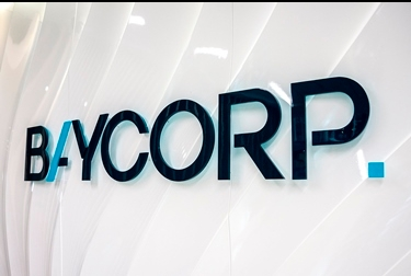 Baycorp appoints new chief executive